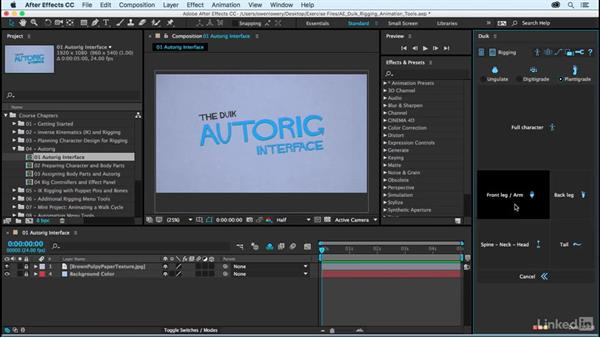 Autorig interface: After Effects Duik Rigging & Animation Tools