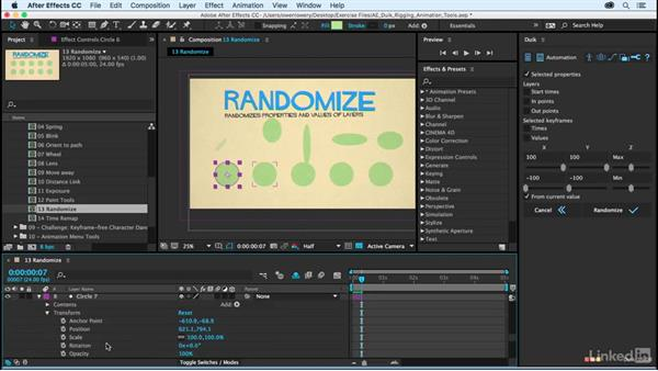 Randomize: After Effects Duik Rigging & Animation Tools