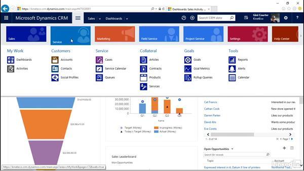 Launch the Interactive Service Hub: Microsoft Dynamics CRM: Customer Service