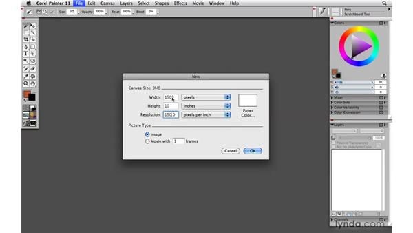 Sizing image resolution for output: Painter 11 Essential Training