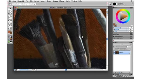 Navigating Painter: Painter 11 Essential Training