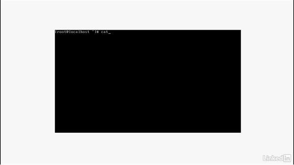 Learning the RHEL environment: Set Up a Red Hat Enterprise Linux Server