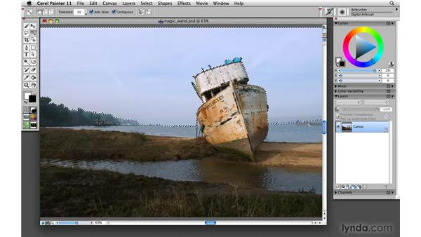 Making selections using the Magic Wand tool: Painter 11 Essential Training
