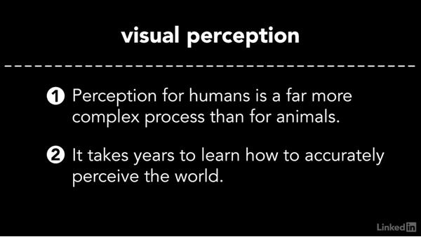 The visual pattern recognition system: Cinematography 01: Narrative Fundamentals