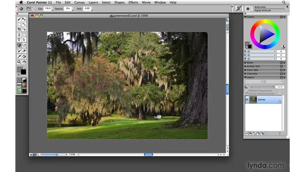 Focusing on the subject: Painter 11 Essential Training