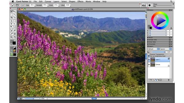 Adapting color in a photograph for photo painting: Painter 11 Essential Training