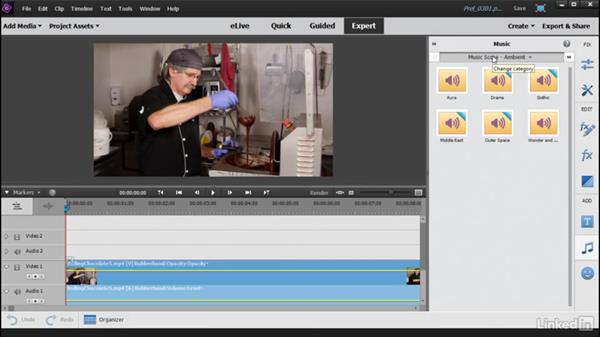 Actions available from the toolbar: Learning Premiere Elements 15