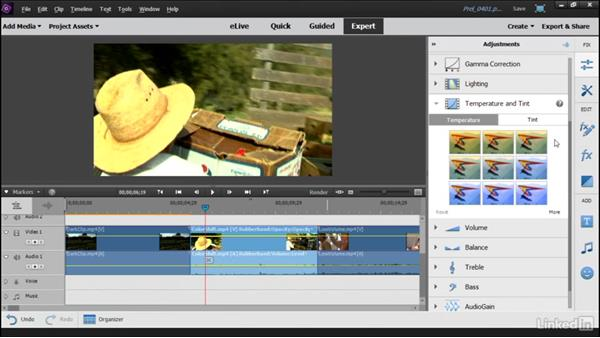 Correcting color and lighting with Adjustments: Learning Premiere Elements 15
