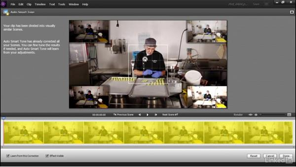 Correcting lighting and contrast with the Auto Smart Tone tool: Learning Premiere Elements 15