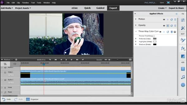 Adding professional color grading with Hollywood Looks: Learning Premiere Elements 15