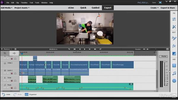 Using the Audio View workspace: Learning Premiere Elements 15
