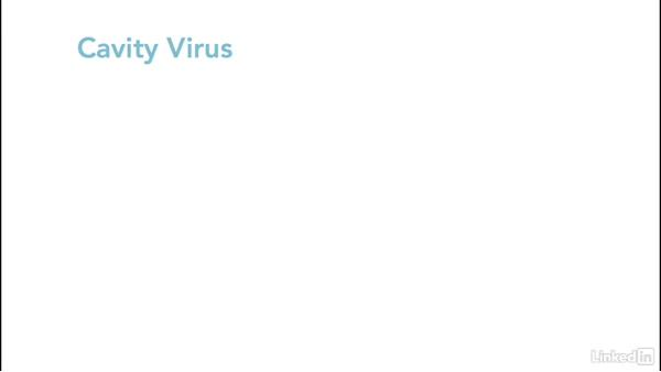 Virus methodology: Ethical Hacking: Viruses and Worms