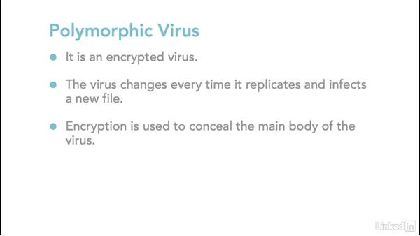 Parasitic, polymorphic, and metamorphic: Ethical Hacking: Viruses and Worms