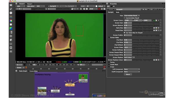 KEYLIGHT: Viewing status and multipass keying: VFX Keying: Master Course