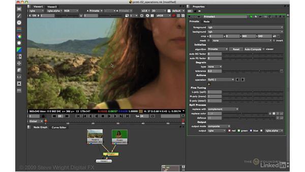 Primatte: Auto-Compute and advanced spill suppression: VFX Keying: Master Course
