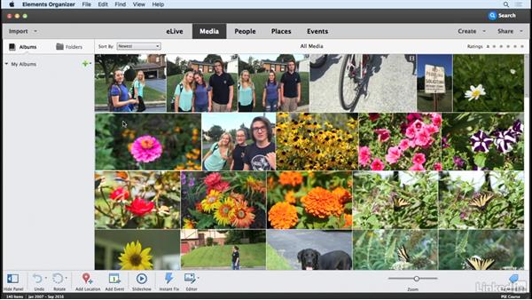 What you should know: Learning Photoshop Elements 15