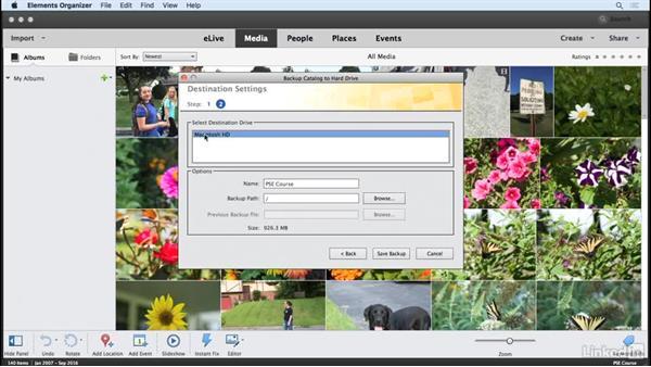 Backing up your catalogs: Learning Photoshop Elements 15