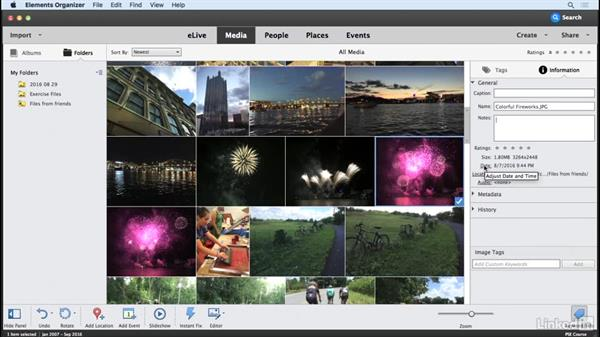 Viewing information about photos: Learning Photoshop Elements 15