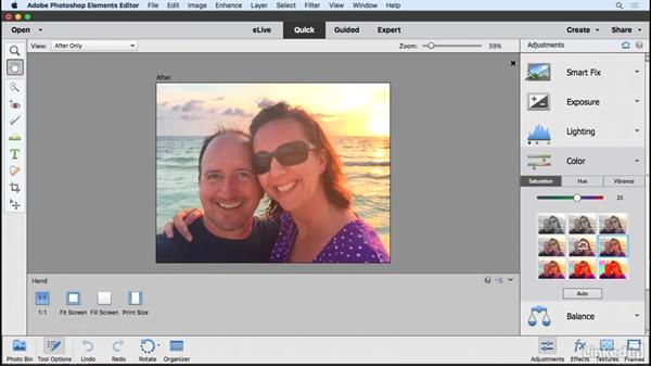 Utilizing the tools in the Quick Editor: Learning Photoshop Elements 15