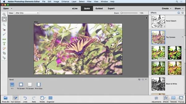 Quick Editor: Making fun photo edits: Learning Photoshop Elements 15