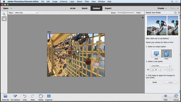 Resizing a photo: Learning Photoshop Elements 15