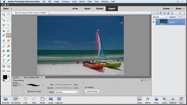 Retouching photos in Expert mode: Learning Photoshop Elements 15