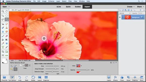 Using the Refine Selection brush: Learning Photoshop Elements 15