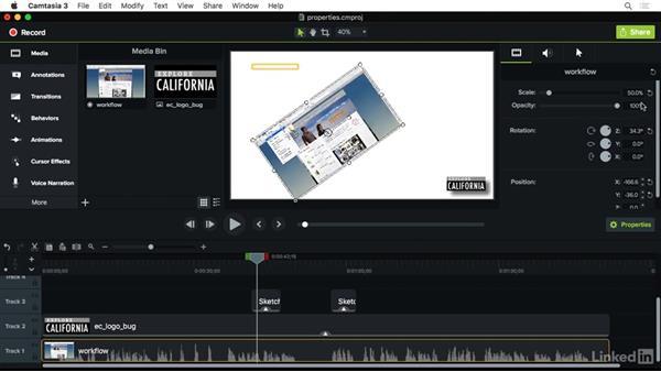 Setting visual properties: Camtasia 3 for Mac Essential Training