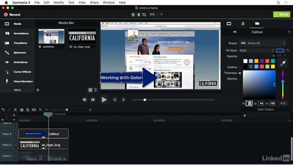 Customizing colors: Camtasia 3 for Mac Essential Training