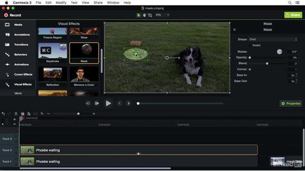 Using the Mask effect: Camtasia 3 for Mac Essential Training