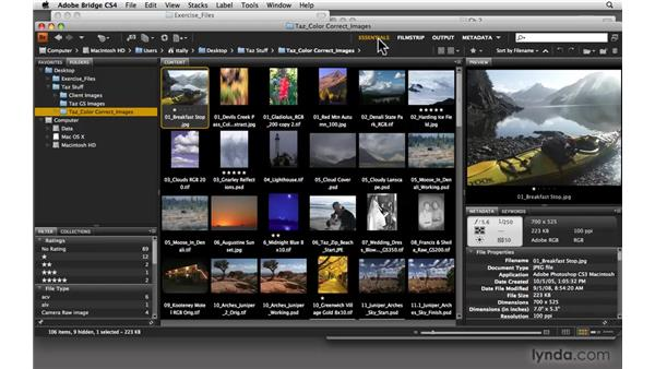 Understanding the Bridge interface: Photoshop CS4: Color Correction