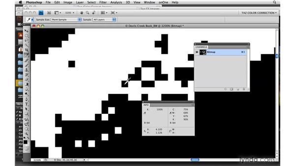 Understanding bit depth and grayscale: Photoshop CS4: Color Correction