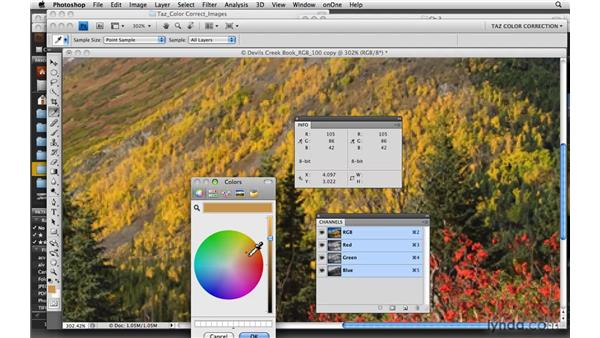 Measuring RGB: Photoshop CS4: Color Correction