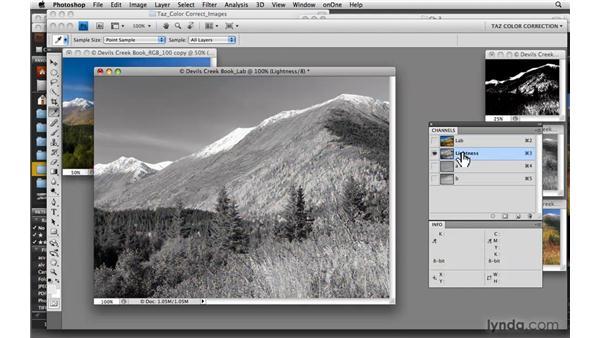 Exploring LAB : Photoshop CS4: Color Correction