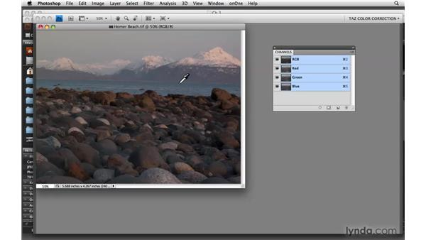 Making visual evaluations and judgments: Photoshop CS4: Color Correction