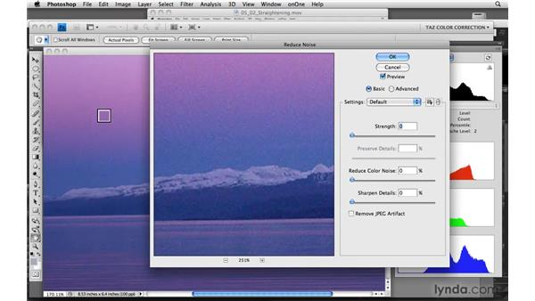 Finding and evaluating patterns: noise, posterization, and screens: Photoshop CS4: Color Correction