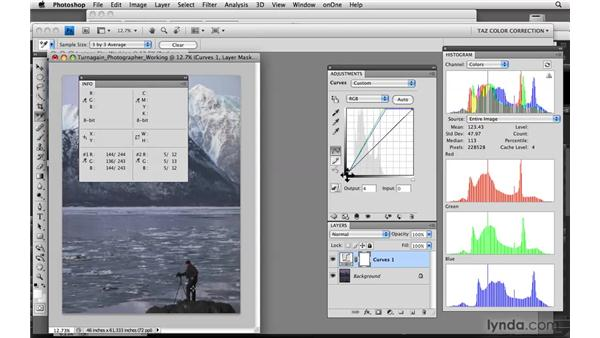 Identifying and correcting shadows: Photoshop CS4: Color Correction