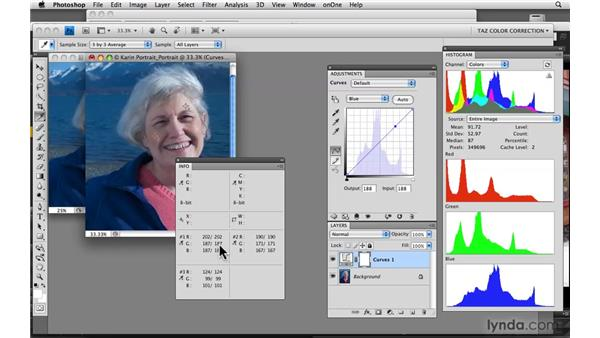 Evaluating and correcting skin tones: Photoshop CS4: Color Correction