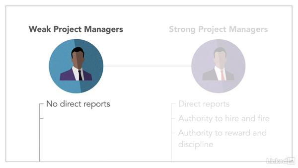 Types of project managers: Leading Projects