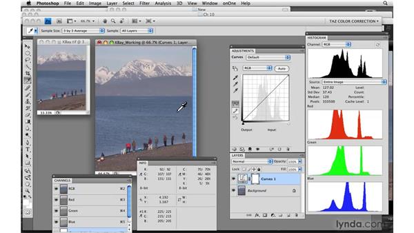 Neutrals and potential neutrals: Photoshop CS4: Color Correction