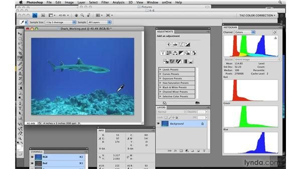 Underwater images: Photoshop CS4: Color Correction