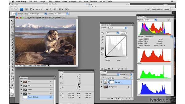 Review: Photoshop CS4: Color Correction