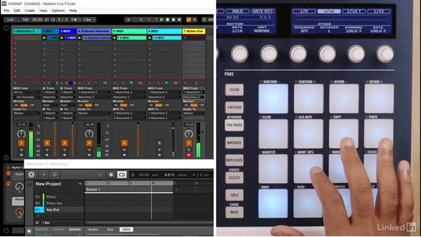 How to use MASCHINE as a chord and arp generator in Ableton: Using MASCHINE with Ableton Live