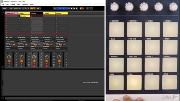 Creating multichannel audio loops in real time from MASCHINE: Using MASCHINE with Ableton Live