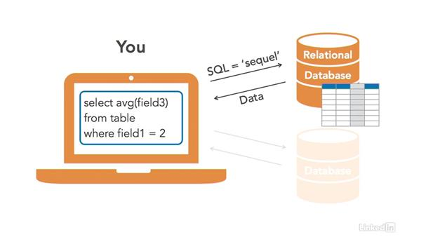 SQL and relational databases: SQL for Data Reporting and Analysis
