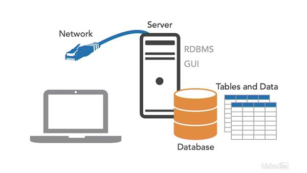 Database setup: SQL for Data Reporting and Analysis