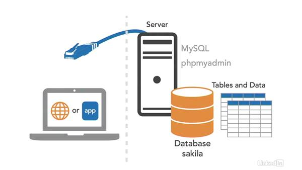 Code in SQL: SQL for Data Reporting and Analysis