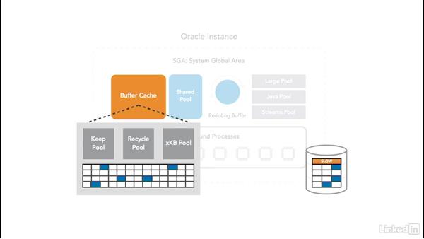 Buffer cache: Oracle 12c Database Administration Fundamentals