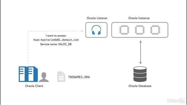 How client connections work: Oracle 12c Database Administration Fundamentals