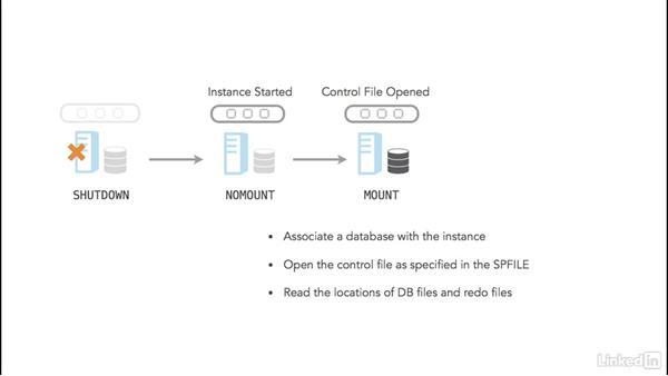 Startup: Oracle 12c Database Administration Fundamentals